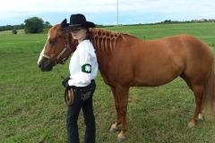 Open Horse 2